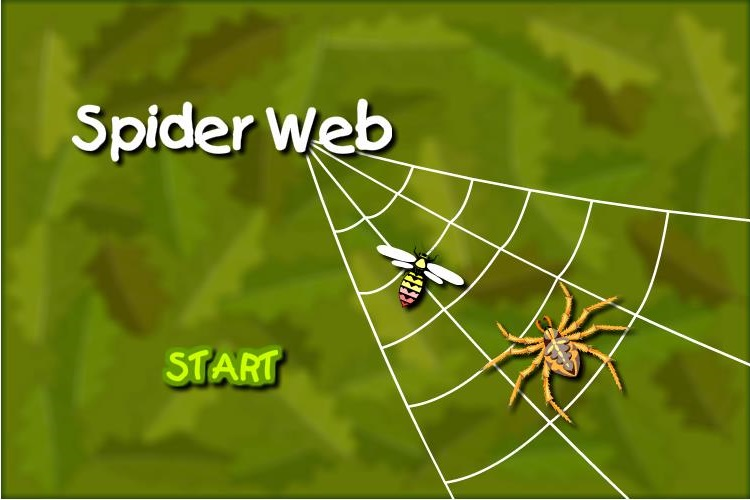 Brain Challenge - Help the spider catch the fly!